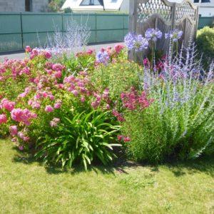 Entretien jardin paysagiste - Autres