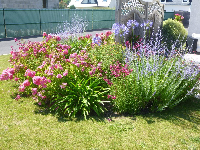 Entretien jardin paysagiste - Massifs
