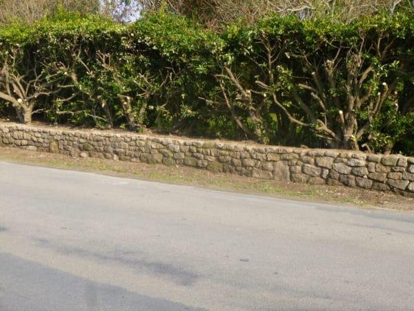 Muret pierre seche - Muret en pierre